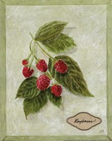Bookplate Raspberries Fine Art Print