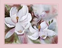 Magnolia Blooms Fine Art Print
