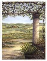 II Trebbio East Fine Art Print