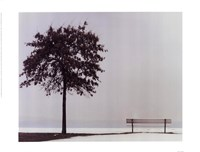 Bench: Oyster Bay, NY Fine Art Print
