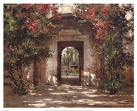 Flowered Doorway Framed Print