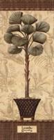 Botanical Palm I - Mini Framed Print