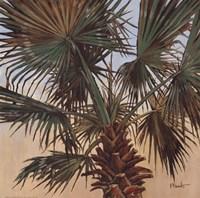 Solitary Palm - Mini Framed Print