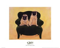 Katie And Daisy The Pugs Fine Art Print