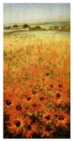 Field With Sunflowers Fine Art Print