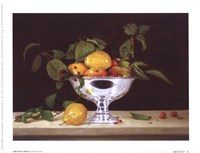 Still Life In Silver Fine Art Print