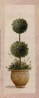 Topiary Ball II Fine Art Print