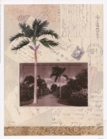 Nassau Framed Print