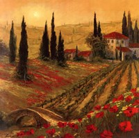 Poppies Of Toscano I Framed Print