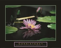 Consistency - Pond Flower Fine Art Print