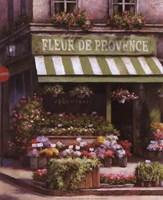 Fleurs De Provence Fine Art Print
