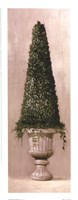 Florentine Topiary ll Framed Print