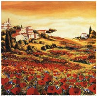 Valley Of Poppies Fine Art Print