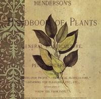 Botany Principles I Fine Art Print