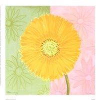 Yellow Daisy Framed Print