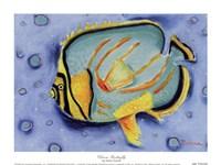 Clown Butterfly Fine Art Print