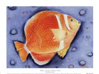 White Spotted Island Fish Framed Print