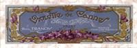 Violette De Cannes Fine Art Print