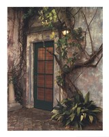 Door No7 Fine Art Print