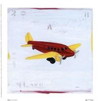 Plane Fine Art Print