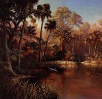 Myakka Sunset Fine Art Print