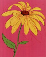 Wild Daisy III Fine Art Print