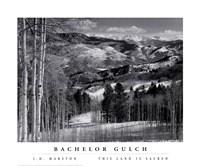 Bachelor Gulch Fine Art Print