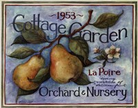 Cottage Garden II Framed Print