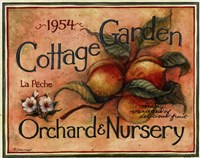 Cottage Garden IV Framed Print