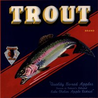 Trout Framed Print