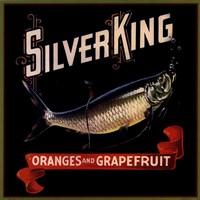 Silver King Fine Art Print