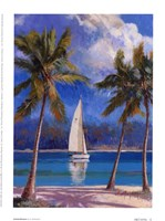 Island Breeze Framed Print