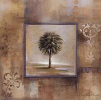 Sunlit Palmetto I Framed Print