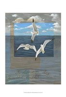 Three White Gulls II Fine Art Print