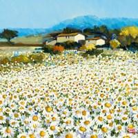 Farm Near Bini Fine Art Print