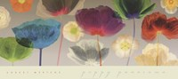 Poppy Panorama Fine Art Print
