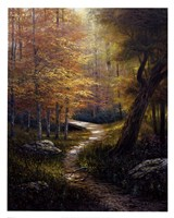 Aspen Beauty Fine Art Print