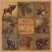 Deer Antelope Framed Print