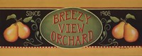 Breezy View Orchard Framed Print