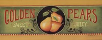 Golden Pears Fine Art Print