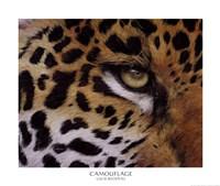 Camouflage Framed Print