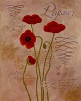 Poppy Fresco I Fine Art Print
