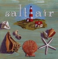 Salt Air Fine Art Print