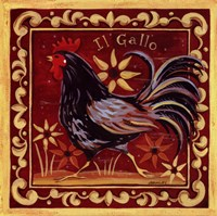 Il Gallo II Fine Art Print