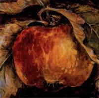 Red Apple Fine Art Print