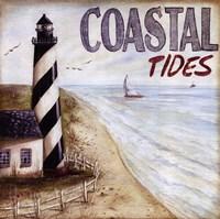 Coastal Tides Framed Print