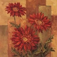 Daisies Terra Cotta Fine Art Print