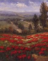 Poppy Vista II Fine Art Print