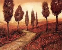 Strada Tra I Papaveri Fine Art Print