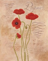 Poppy Fresco I Framed Print